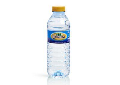 Fuente Liviana 0,33 litros PET