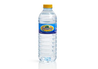 Fuente Liviana 0,5 litros PET